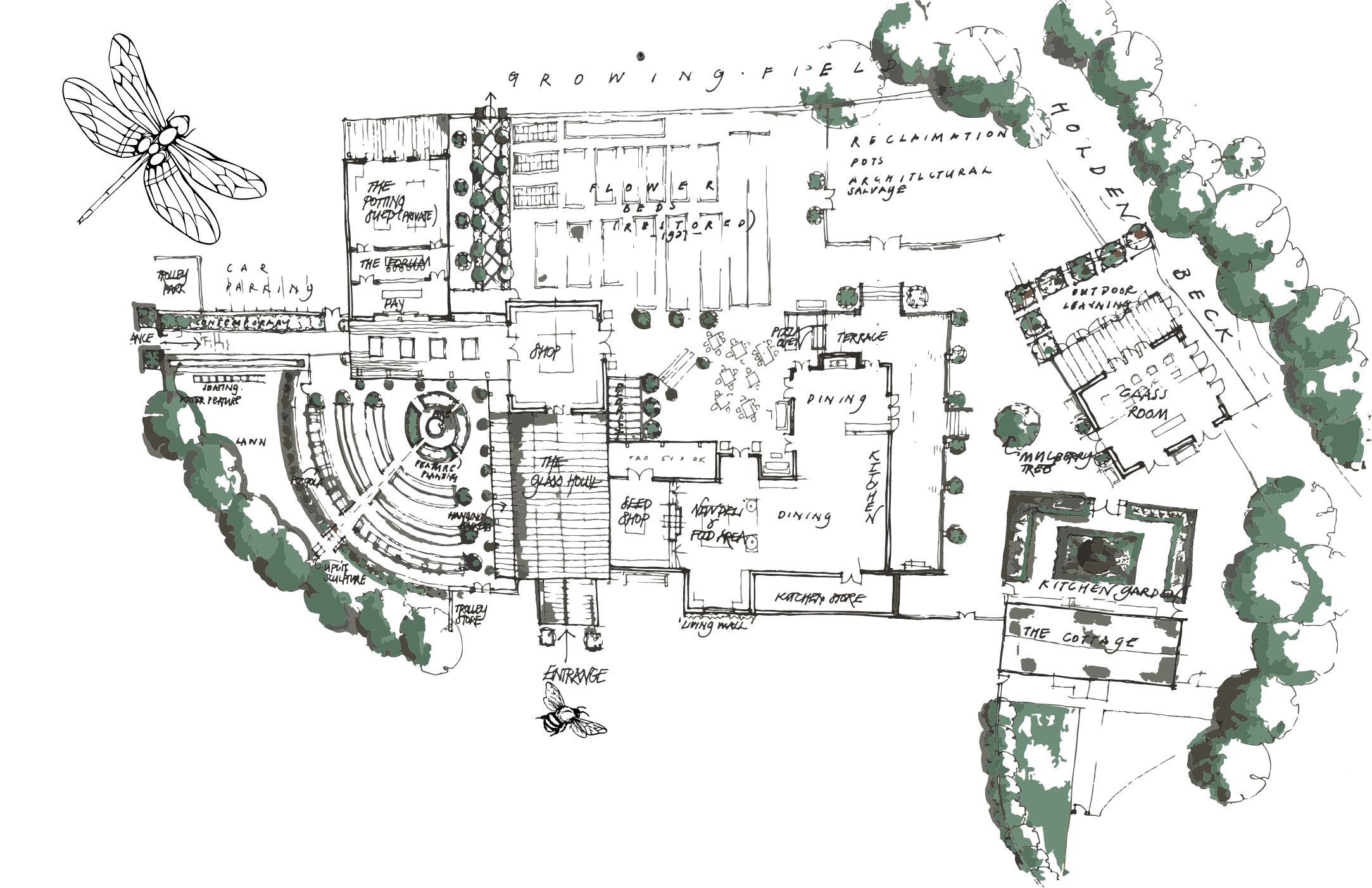 section image